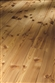 Larch Solid Wood Flooring Classic 5050 Natur untreated